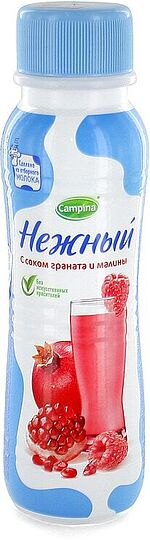 Yoghurt drinking with pomegranate and raspberry juice
